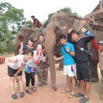 18)ラオスの象乗りビジネス
